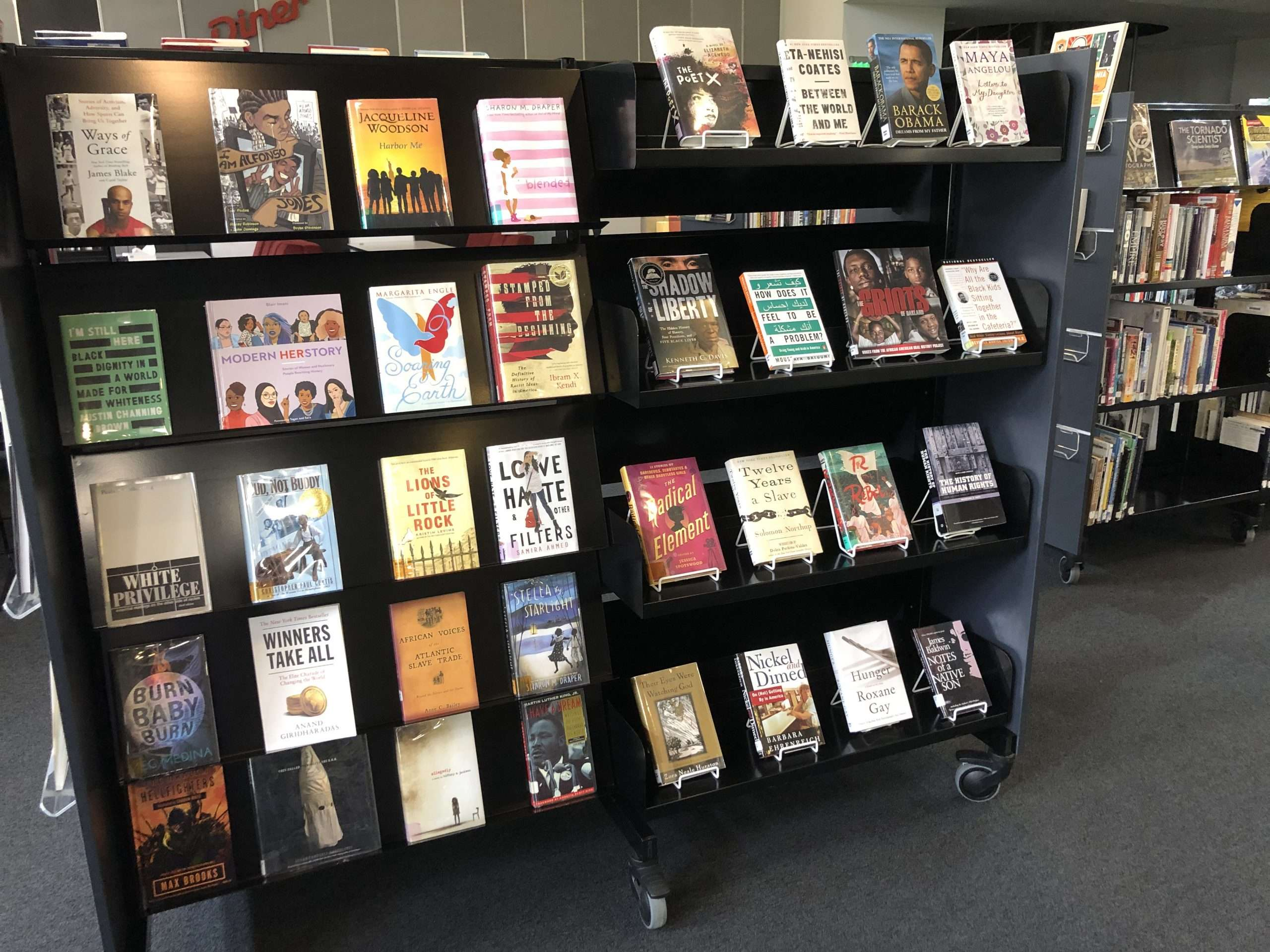 Black Lives Matter: A Summer Reading List for AISB Students