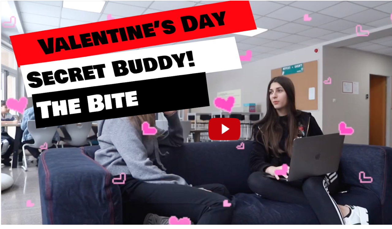 Want a Valentine's Day Buddy?