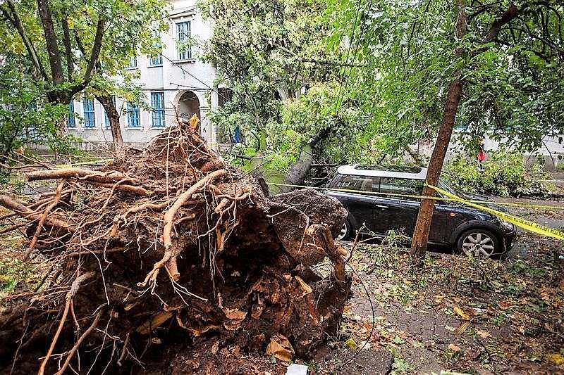 Deadly Storms Prompt Government Action