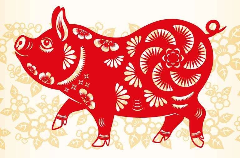 Everything you need to know about the Chinese Year of the Pig