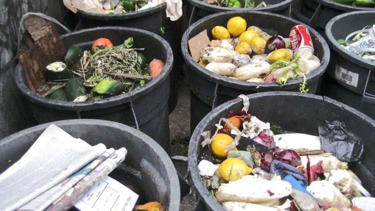 Food Waste: Why Does It Matter?
