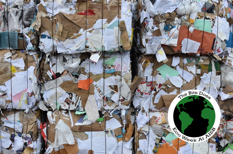 Paper Wastage: Why we need to be doing more to stop it